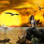 猛暑と闘う生き物