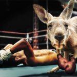 敗北するボクサー